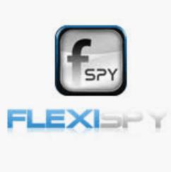 Приложение Flexispy
